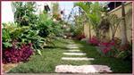 ככה תוכלו לגדל גן ירק וצמחי תבלין בבית