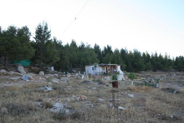חוות מעון. ארכיון (hebron.com)