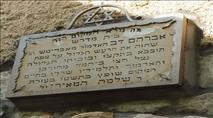 ה'בת עין' | מים מארץ ישראל