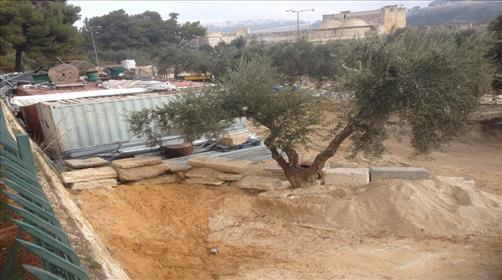 חפירות ארכיאולוגיות בהר הבית. ארכיון