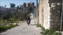 נעצר החשוד בגרימת מות מרים פרץ: ערבי כבן 50 מבית צפפא