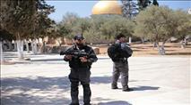 צפו בתיעוד: ערבים מתפרעים בירושלים