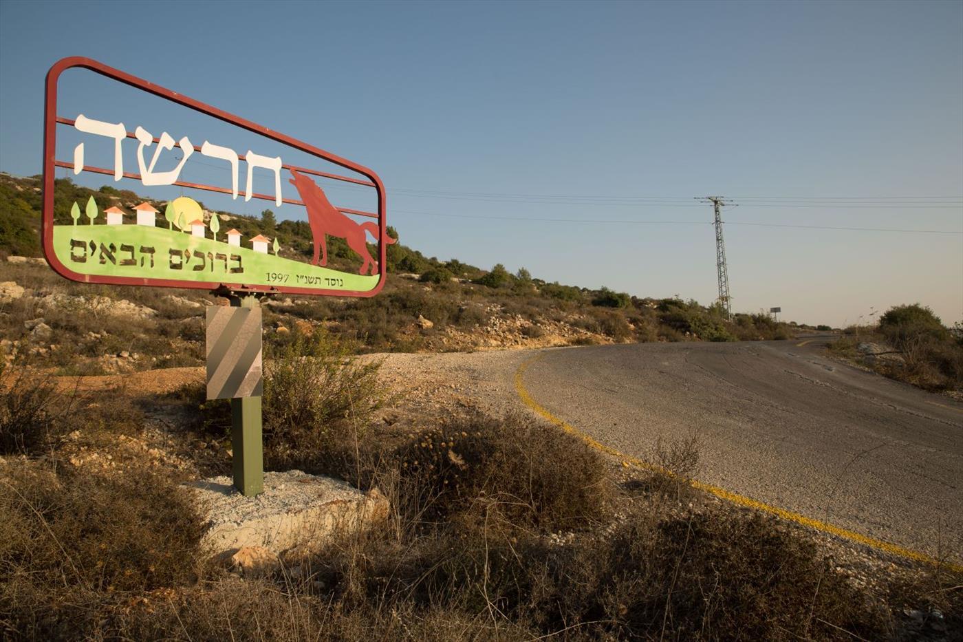 דרך הגישה לחרשה צילום: יוגב הלל/TPS
