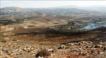 גבעת רונן: ערבים הציתו שריפה וגרמו לנזק כבד לכרם