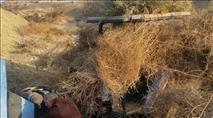 בזכות המארב: חוליית גנבי טרקטור נתפסה באזור יריחו