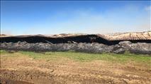 """מדינת ישראל: הטרור החקלאי - """"נזקי טבע"""""""