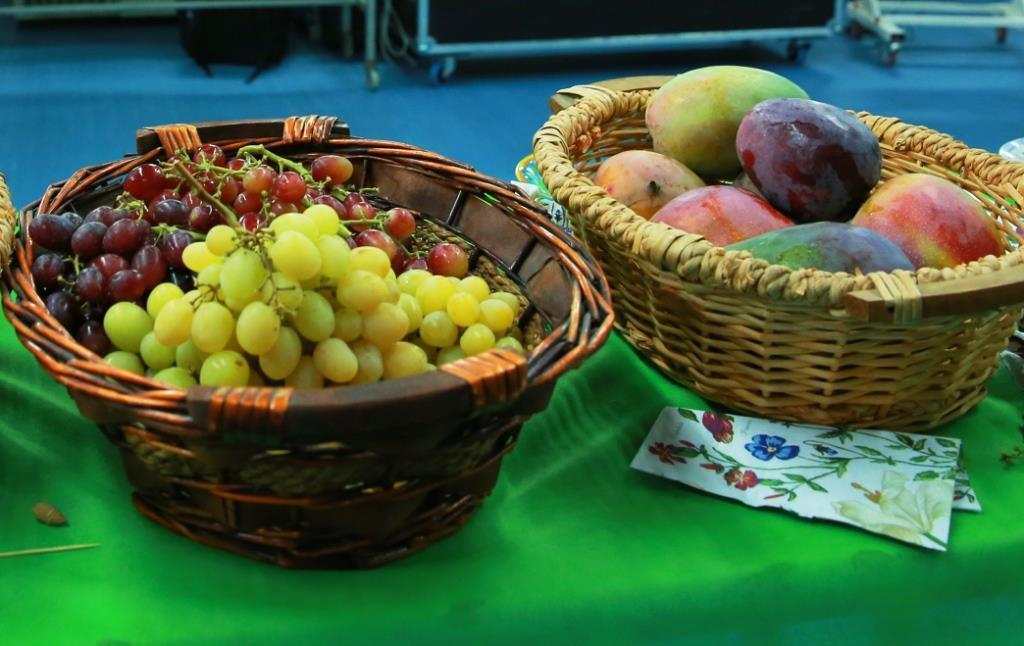 פירות ארץ ישראל (Israel Blizovski/TPS)