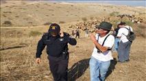 """אנרכיסט תועד מבזה שוטר מג""""ב אתיופי"""