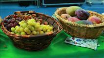 """""""בט""""ו בשבט אוכלים פירות טריים מארץ ישראל"""""""