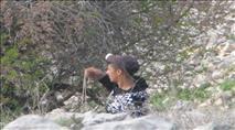 בצלם נגד החיילים: חייל שמח כשפגע בערבי שיידה אבן