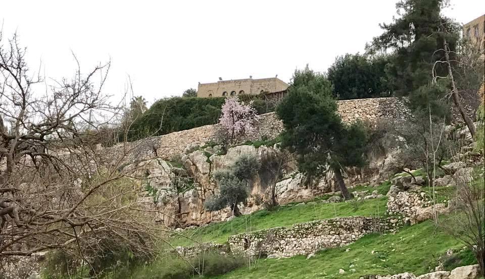 שרידי אחת השכונות (אבי אבידור)