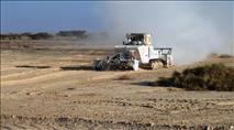 הערבה בפריחה: חקלאות במקום מוקשים