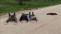 """שוב: ערבים חמושים במטענים נתפסו בבימ""""ש צבאי"""