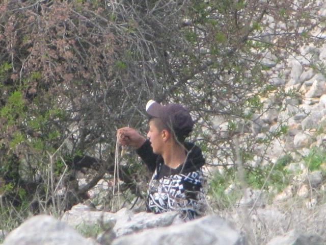 ערבי מיידה אבנים בבורין (עוצמה יהודית)