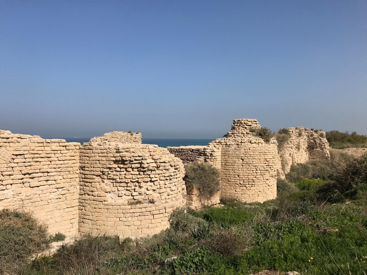 מצודה עתיקה (ניר כהן)