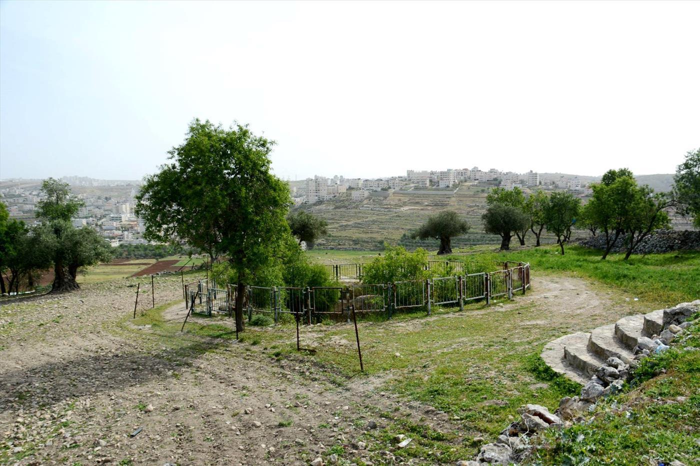 גבעון הקדומה (מאיר רוטר)