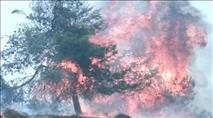 ערבים הציתו שריפות בגוש עציון ובעוטף עזה