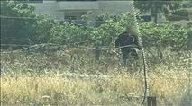 ערבים תקפו שוטרים שבאו לסייע לחקלאים ערבים