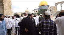 המשטרה נרתעת מהתפרעויות מוסלמים
