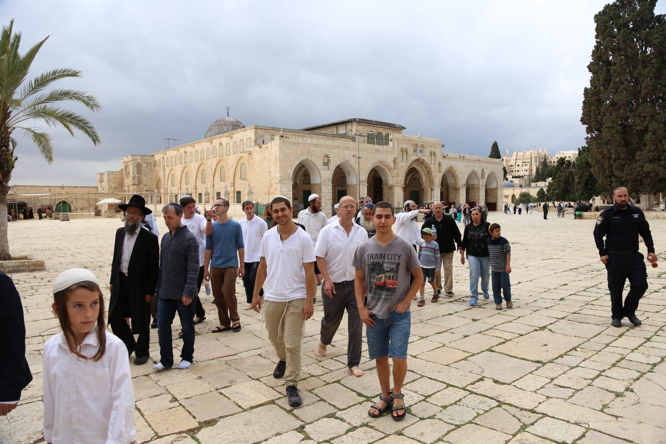יהודים בהר הבית. ארכיון  (מתי עמר TPS)