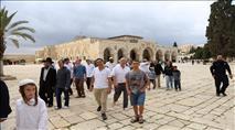 'מתווה שיוויוני' גם בנוכחות היהודית בהר הבית
