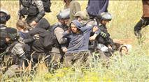 צפו: עימותים קשים בין מתיישבים לשוטרים בגוש שילה