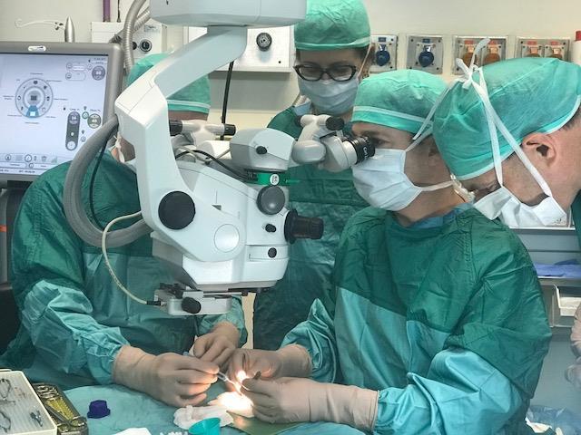 אחד הניתוחים (דוברות בילינסון)