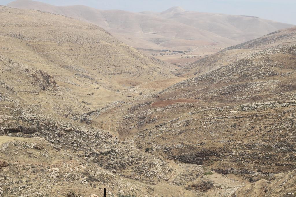 נוף מהשומרון (אלחנן גרונר)