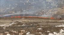 עשרות עצים של חקלאי מיצהר נשרפו מהצתה ערבית