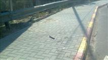 ערבים השליכו מטען צינור על נער בצומת ג'ית