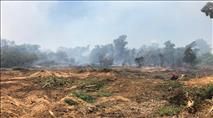 שריפות מעפיפוני תבערה בעוטף עזה