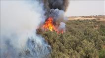ערבים הציתו שריפות ברחבי הארץ