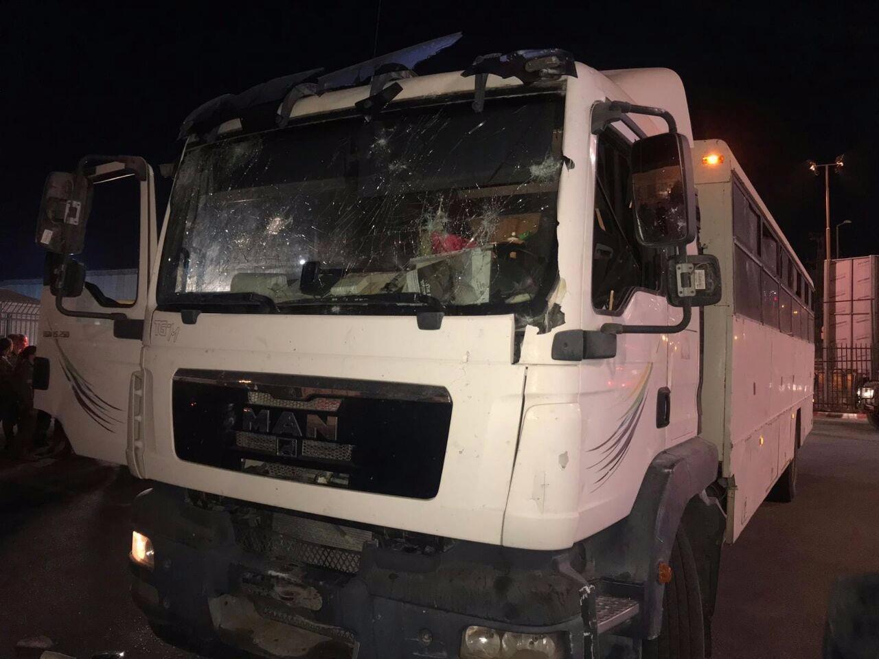 הטיולית שהותקפה (צילום: משטרת ישראל)