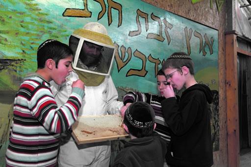 דבוראי במאחורי הדבש (מאחורי הדבש)