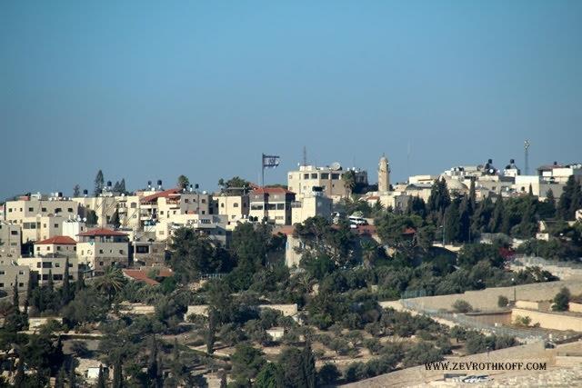 ירושלים.  (זאב רוטקופף)