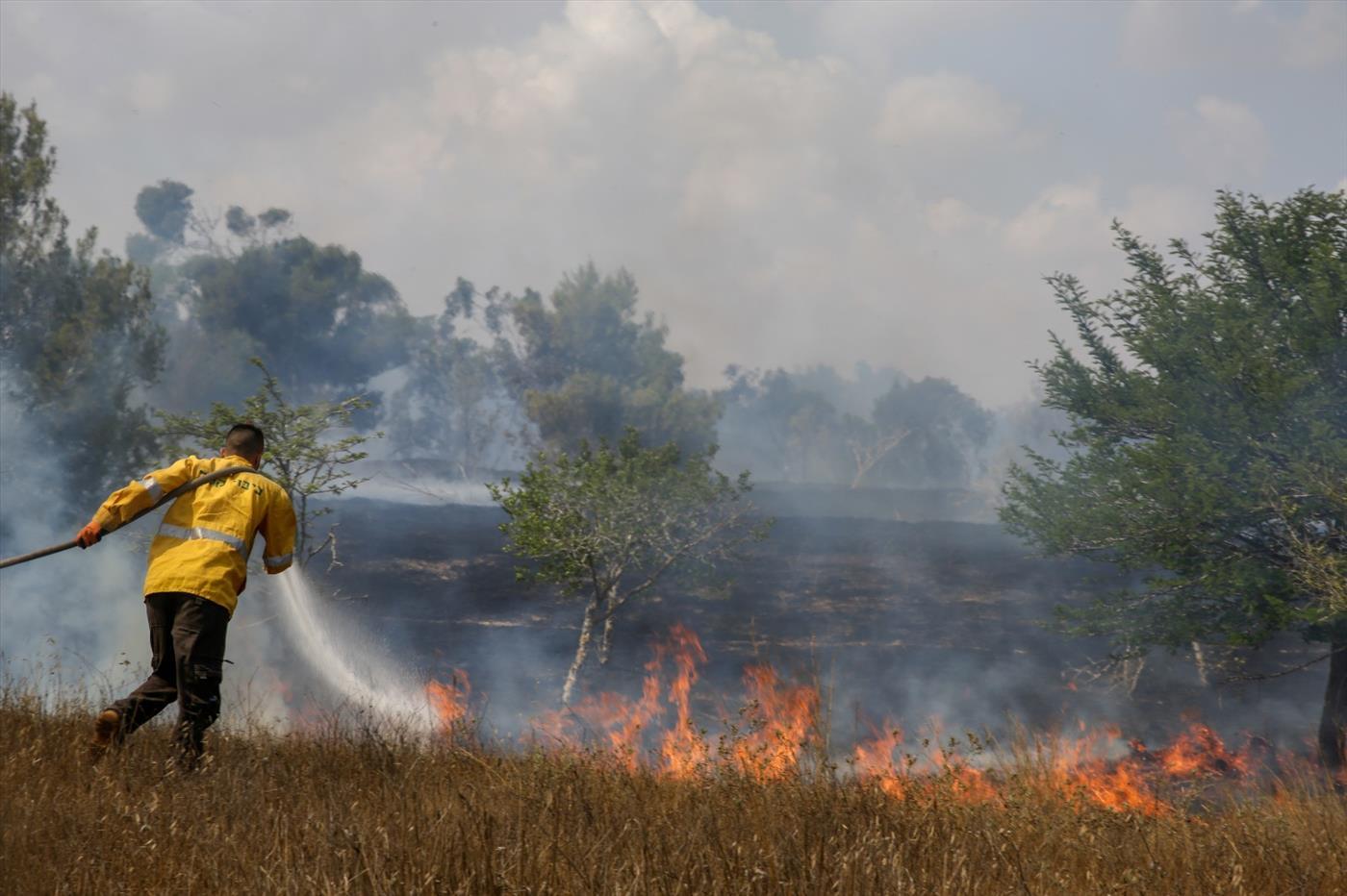 """יערן של קק""""ל נאבק בשריפה בדרום בקיץ האחרון. ארכיון  (צילום: עובדי קק""""ל)"""