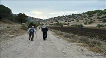 ערבים אזרחי ישראל תקפו מטיילים בכפר בגליל העליון
