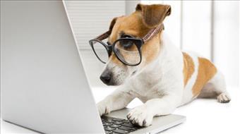 3 סיבות מדוע הנמענים אינם פותחים את האימיילים ששלחתם