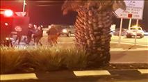 פיגוע ירי בצומת עפרה - ערבי חוסל באיזור בית אל