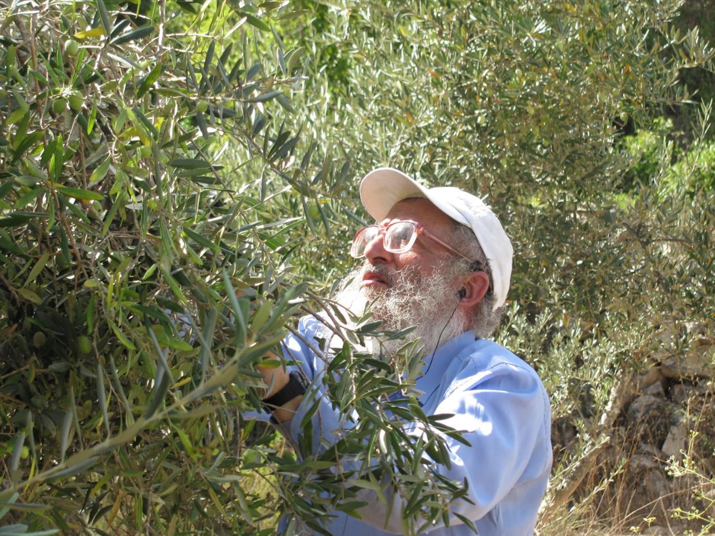 """הרב נתן חי במטע הזיתים שלו (יח""""צ)"""