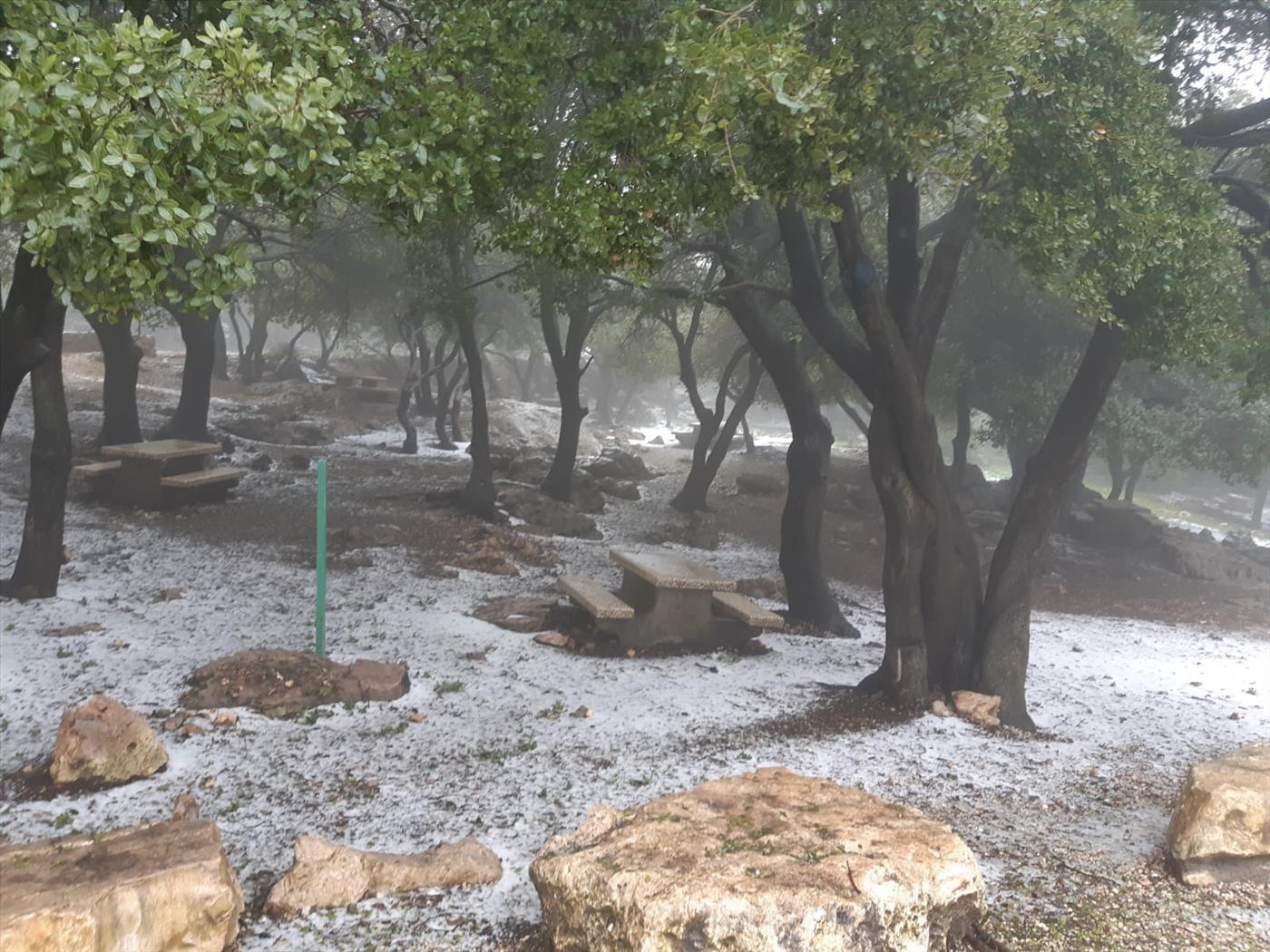 """שלג בהר מירון (יניב פררו רט""""ג)"""