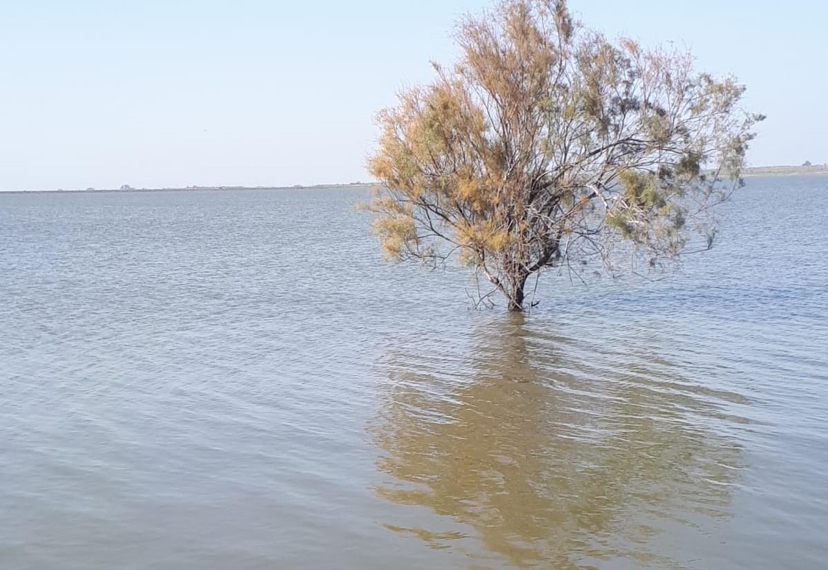 מאגר המים מלא במים  (צילום: תמר גלבוע)