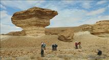 הצטרפו לטיול נדיר בשטחי האש בגבול מצרים