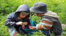 מדור הילדים: סיפור, פרשת שבוע ודף עבודה