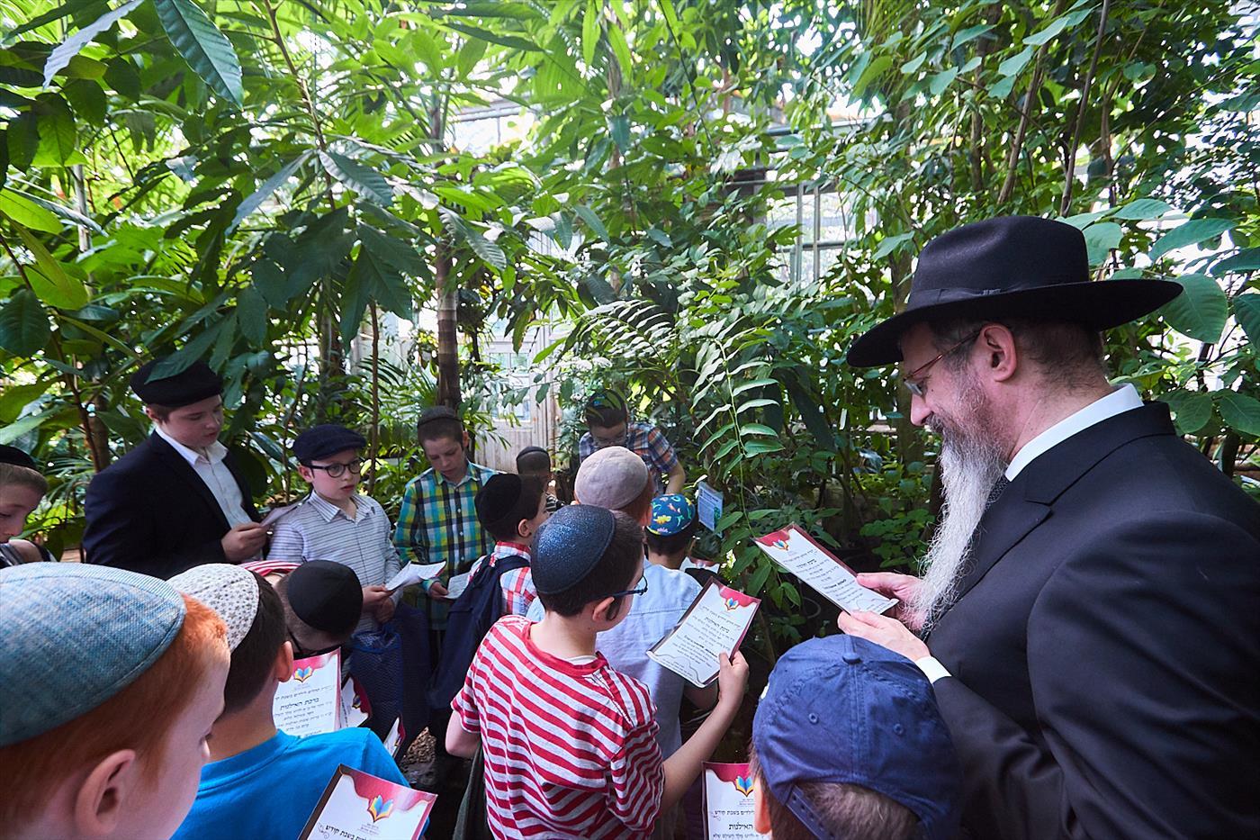 הרב בערל לאזר בברכת האילנות עם ילדי בית הכנסת   (צילום: לוי נאזרוב)