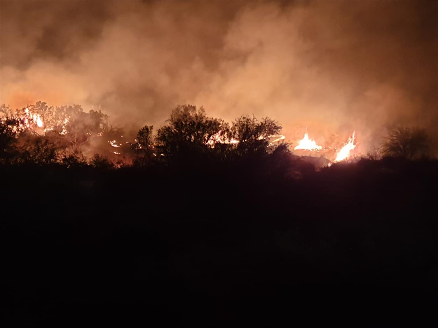 השריפה אמש בחבל אשכול (צילום: חדשות 24 בפייסבוק)