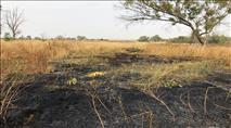 האש חוזרת לעוטף עזה: שריפה סמוך לנחל עוז
