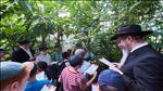 ילדי מוסקבה בירכו על האילנות עם הרב לאזאר