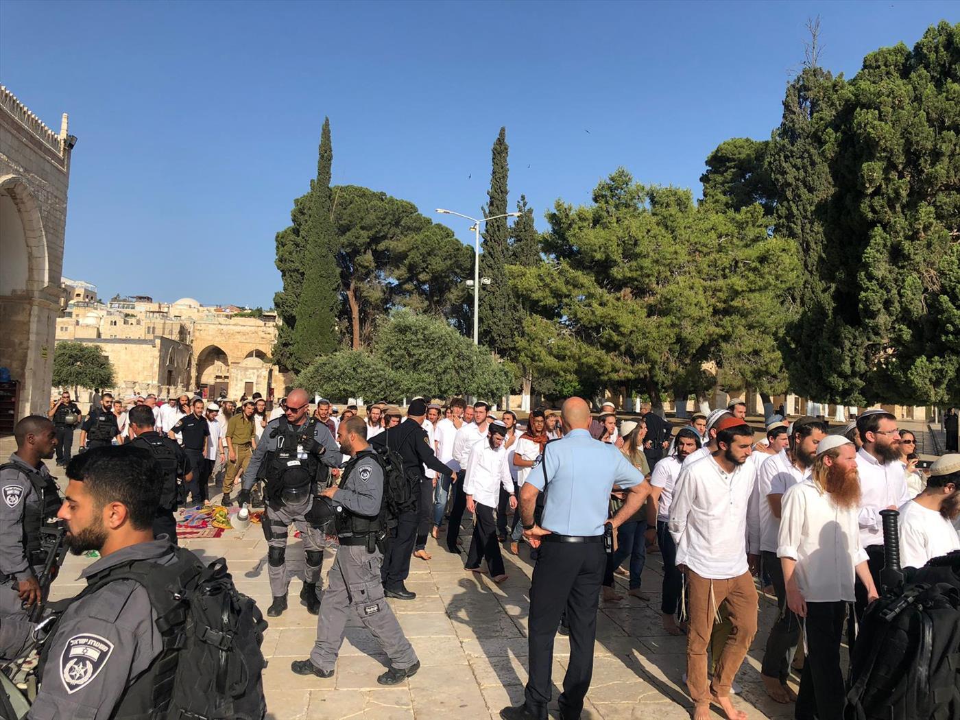 יהודים בהר הבית ביום ירושלים, בשנה שעברה  (משטרת ישראל)