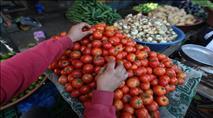 על העגבניה ועל העוקץ